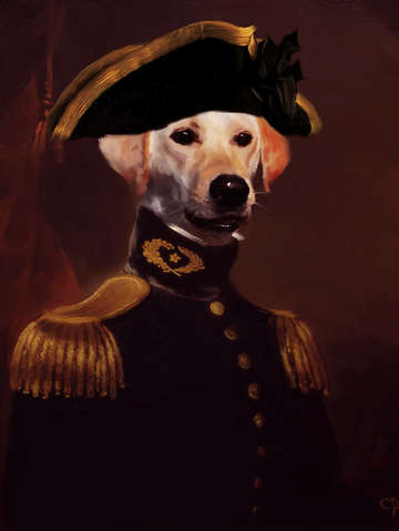 First officer labrador