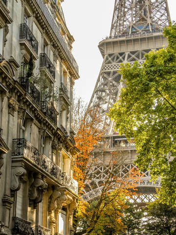 Sunlit eiffel tower in autumn