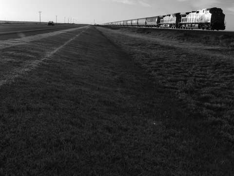 Early Morning West Texas Train