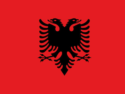 Flag of albania authentic version