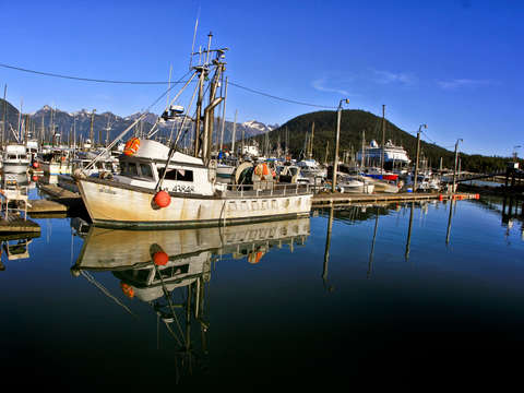 Boats in haines alaska
