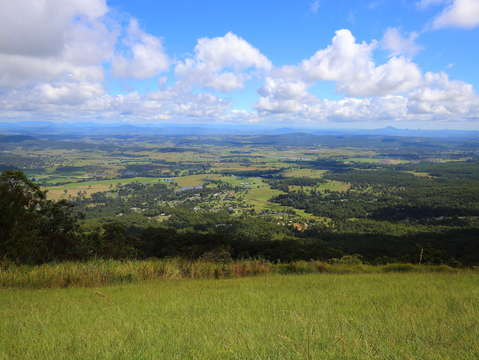 Tamborine Mountain Lookout