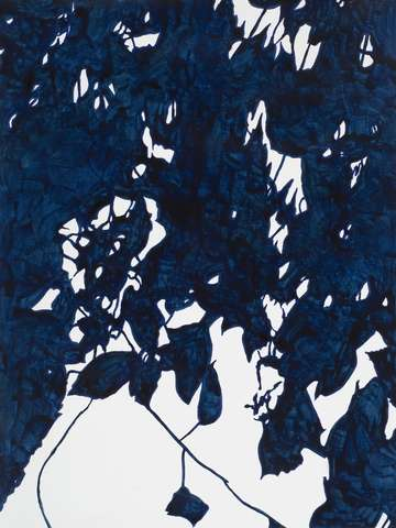Blue black leaves