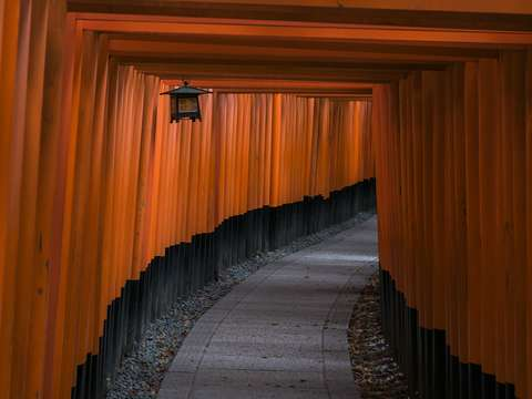 Untitled fushimi inari