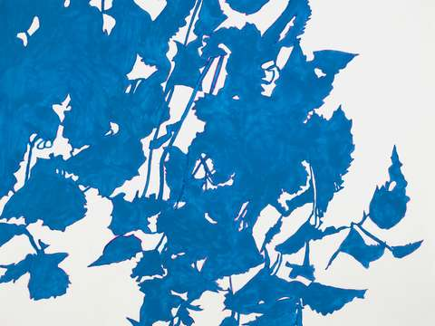 Blue leaves ii