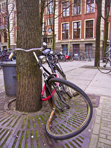 Amsterdam bicycle problem