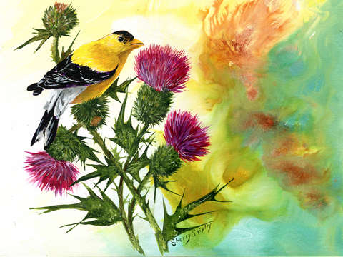 Goldfinch with thistles
