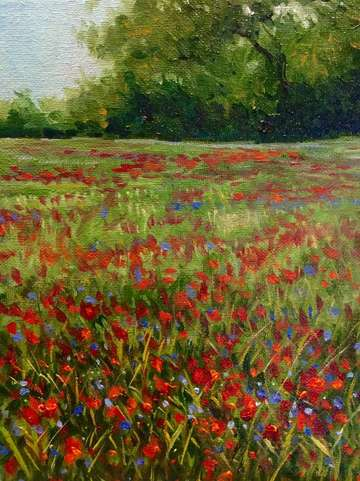 Poppies and periwinkles