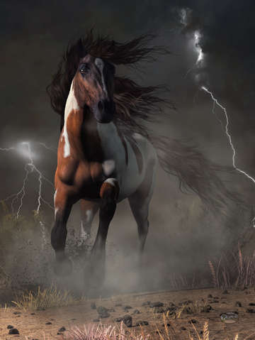 Mustang horse in a storm