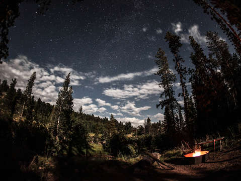 Stars above a river forest