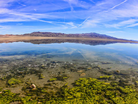 Walker lake nevada 2