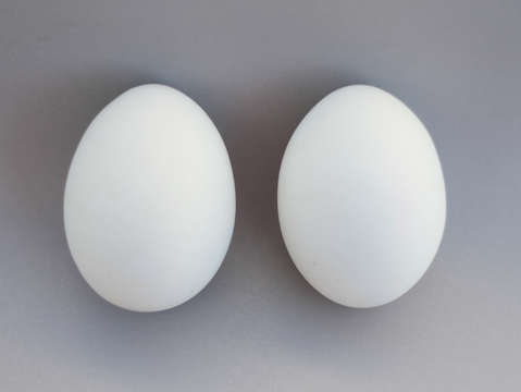 Only two eggs