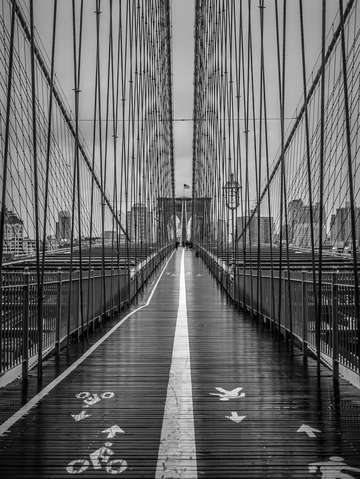 Brooklyn bridge downpour