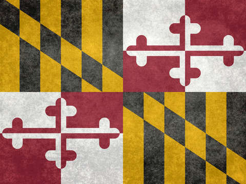 Maryland state flag vintage retro style