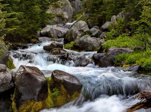 Stream in mount rainier