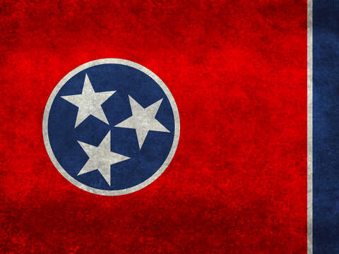 State flag of tennessee vintage
