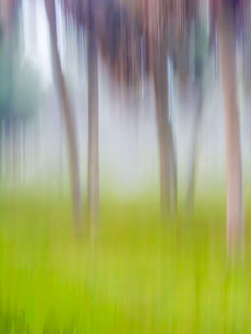 Abstract moving rees background green tan