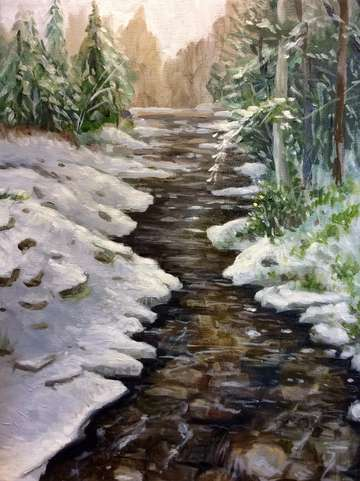 Study of the snowy creek