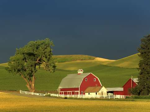 Palouse 7 red barn