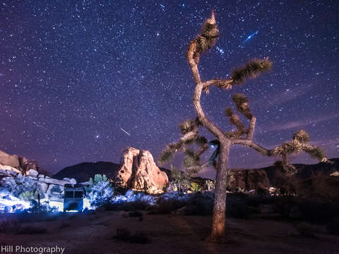 Joshua tree night sky explosion
