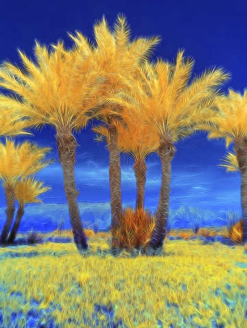 False color infrared palm trees