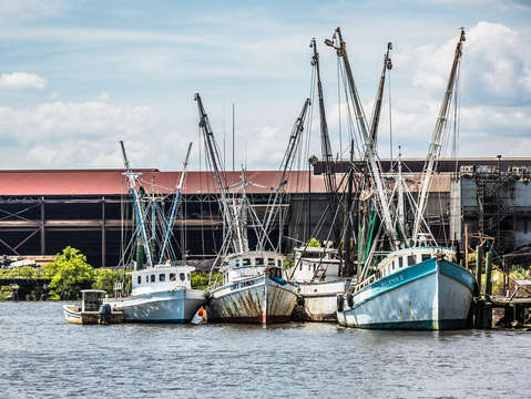 Shrimp boats georgetown