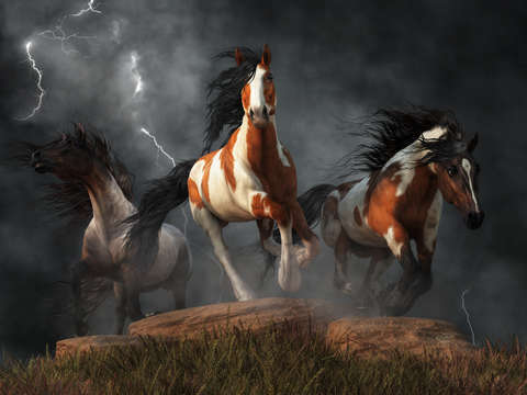 Mustangs of the storm