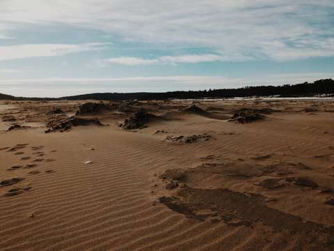 Winter at popham beach