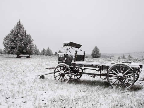 Buggy in snow