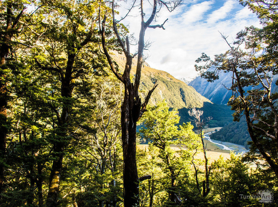 New zealand routeburn track
