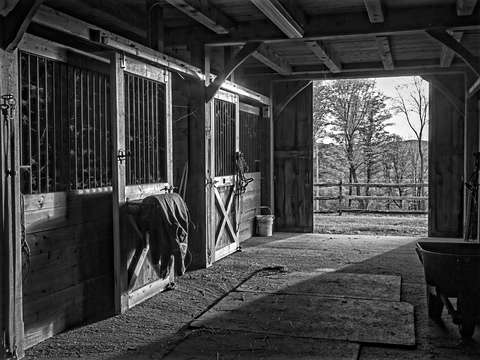 Horse barn black and white