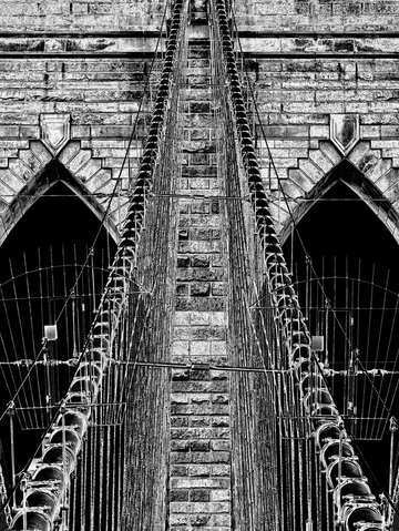 Brooklyn bridge cables 3116bw