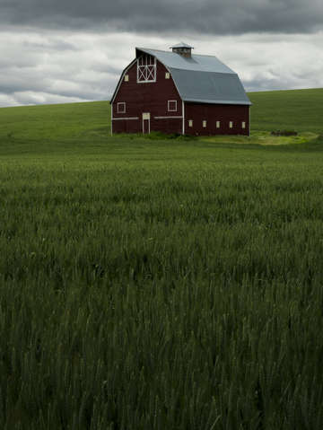 Palouse country barn