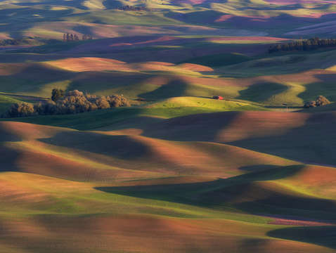 Colors of the palouse