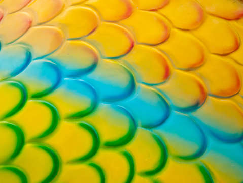 Colorful fish scales