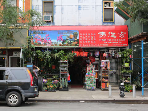 Flower shop in the lower east side