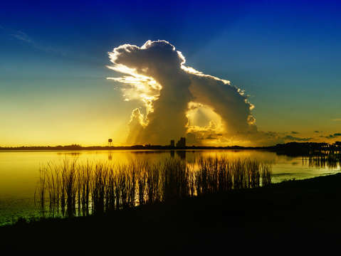 Dog cloud over lake shelby blue gold 0178