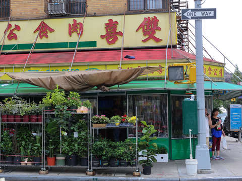 Chinese plant shop on the lower east side