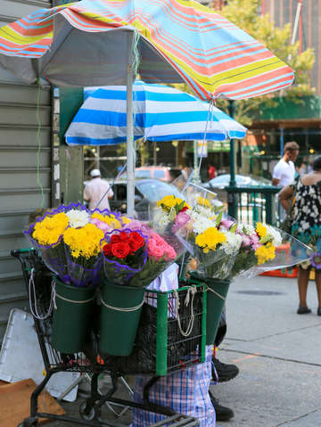 Flower stand harlem nyc new york