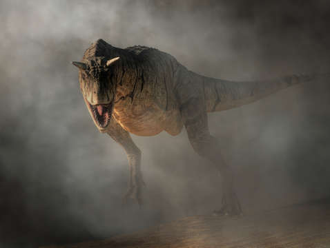 Carnotaurus emerging from fog