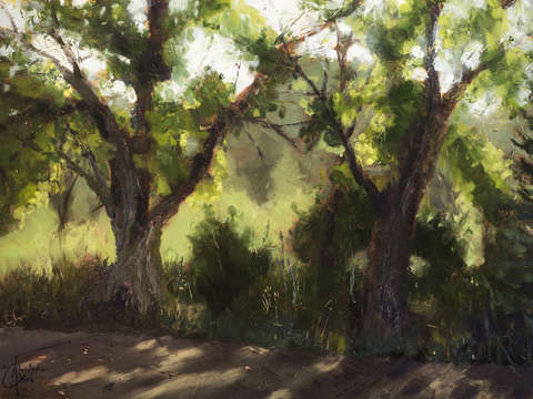 Plein air morning i