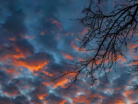 Sunset trees and clouds 4