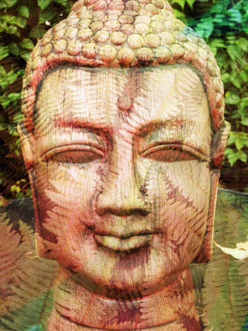 Buddha with leaves 2