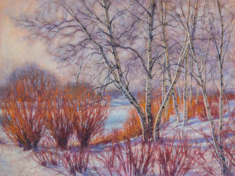 Winter birches and red willows