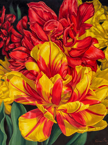 Tulipomania 14 red and yellow