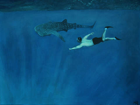 Dale vs. the Whale Shark