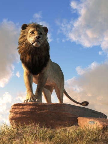 Lion king of beasts