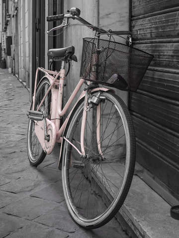 Pink bicycle rome italy