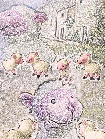 Woolly sheep playing   7956