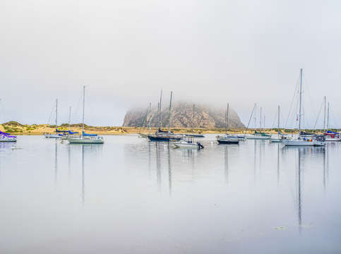 Foggy in morro bay 2